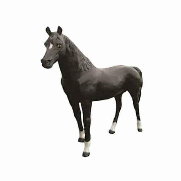 Lebensgrosses Pferd black Araber Hengst