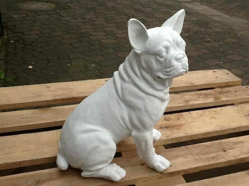 Französische Bulldogge sitzend Rohling