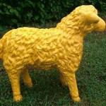 Ein Lamm in gelb