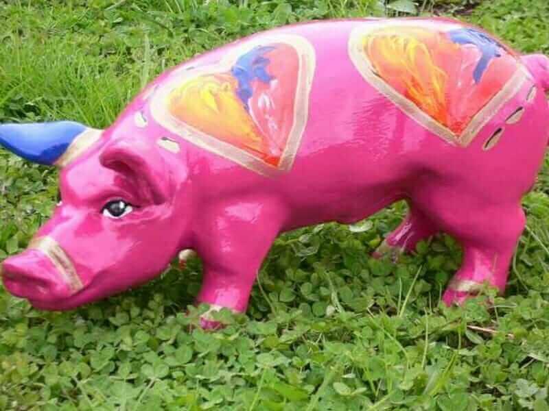 Schwein mit Herz und viel Liebe