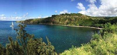 Die Südwestküste von Maui ist für die Walbeobachtung der Buckelwale ein guter Platz.