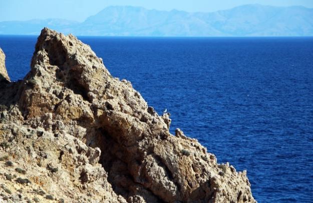 Tierwelt Mittelmeerinseln