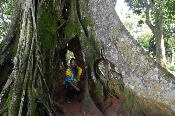 Crouching in a parasitic tree
