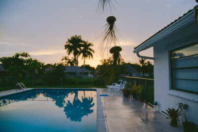 A gorgeous sunset in Josh's backyard.
