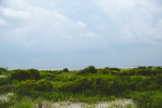 Lots of shrubbery & verdant before getting to the beach.