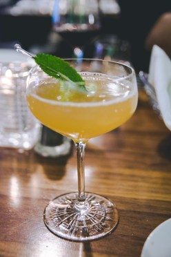 Maggie Oakes   Cocktail