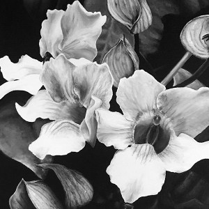 white flowers painting by Tiffany Fowler