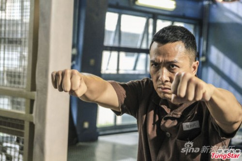 donnie yen kungfu jungle