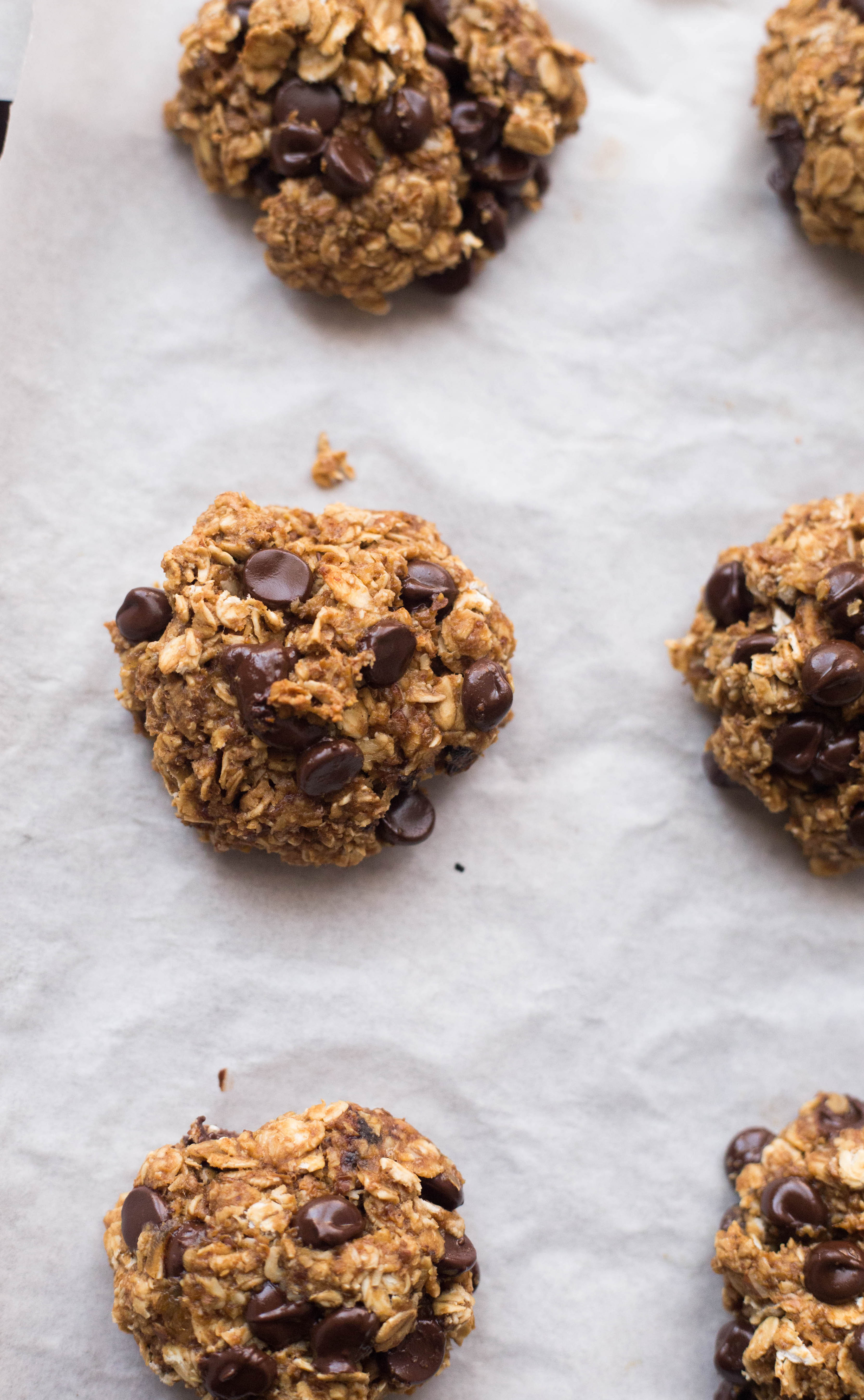 Chocolate, peanut butter and Ginger Oaties