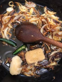 Browned onion, ginger, garlic and green chilli in pot