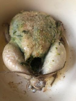 Partially cooked roast chicken