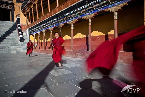 Matt Brandon Image of Buddhist Monks