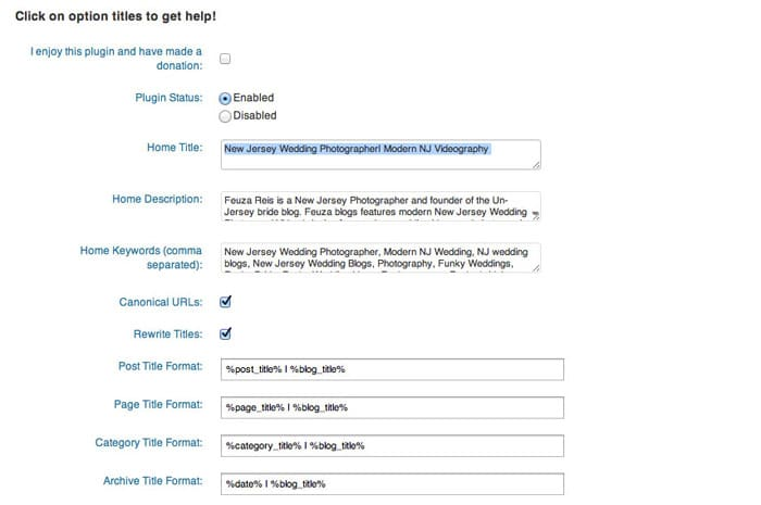 All In One SEO Pack Options