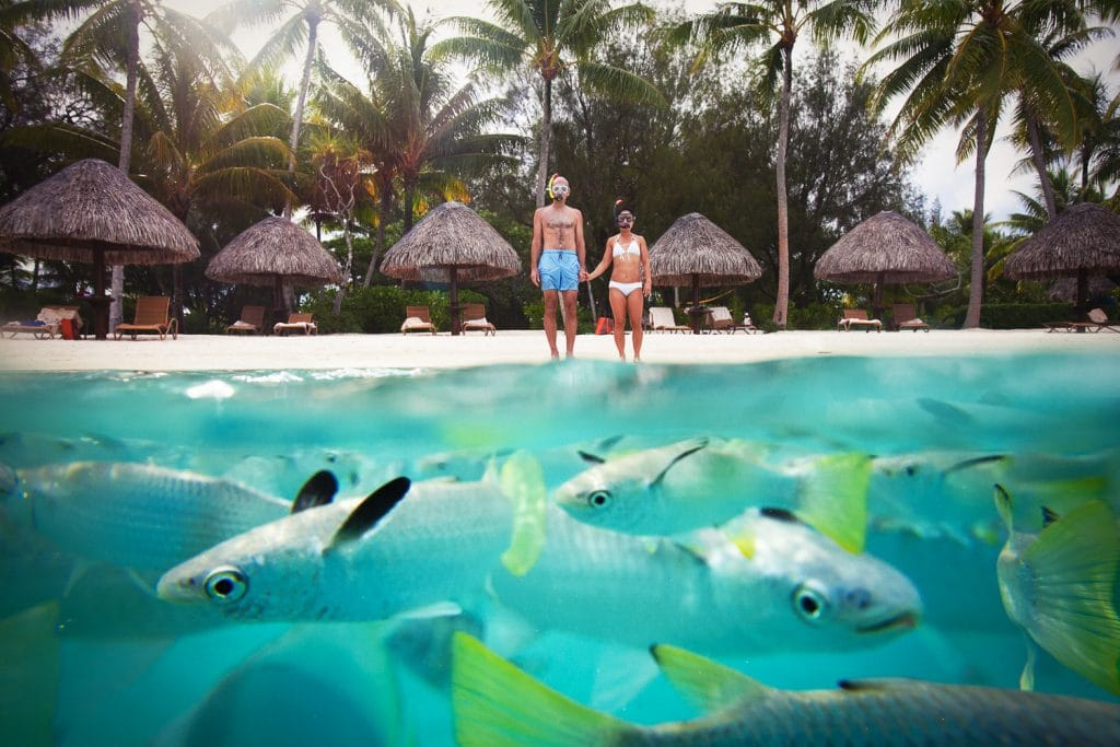 Create Client Experiences: On The Beach With Fish