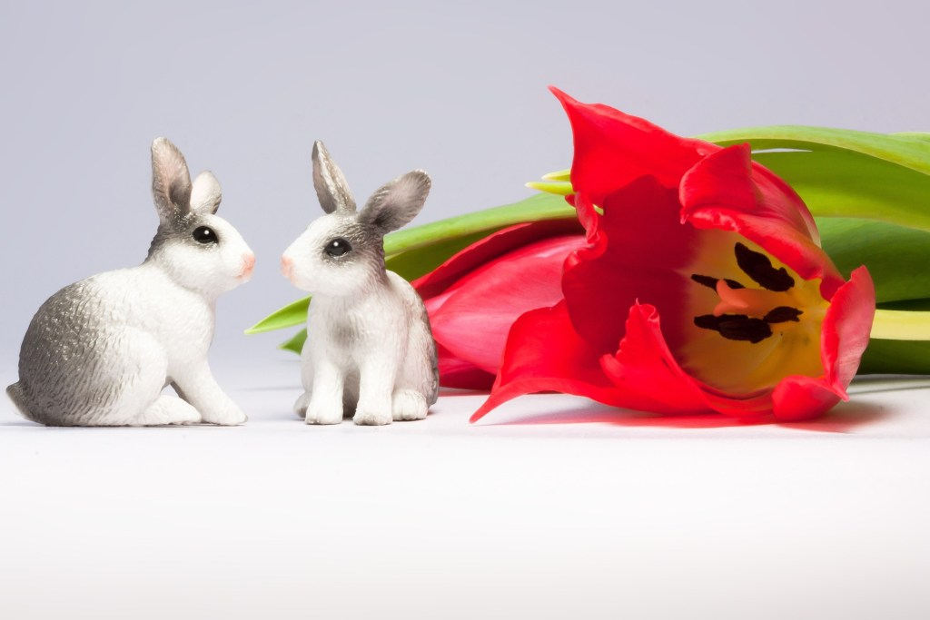 easter-bunny-651674_1920