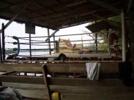 thailand03