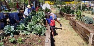 Landscaping with fruits and vegetables | TigerMountain Foundation