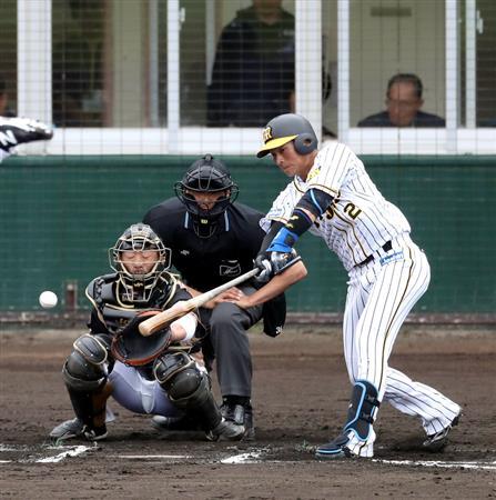 【阪神】北條「3番打ちたい」矢野「北條は1番か2番か、もしくは6番かなぁ」