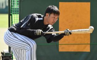 Hanshin Tigers Takayama Shun