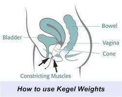 how to use kegel weights