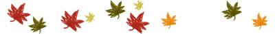 フリー素材:飾り罫・ライン;秋のもみじのwebデザイン素材