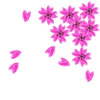 アイコン(twitter,mixi,ブログ)のwebデザイン素材:大人可愛いピンクの桜の春らしいイラストのフリー素材。