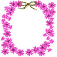 桜の楕円のイラストのガーリーな飾り枠のアイコンのwebデザイン素材。twitter、mixi、ブログなどのフリー素材。