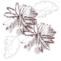 ネットショップ、バナー広告のwebデザイン素材:ガーリーで大人可愛い茶色の花(マーガレット)と葉。アイコン(twitter,mixi)のフリー素材(200×200pix)