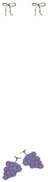 バナー広告、ネットショップのフリー素材:大人可愛い手書きのリボンとラインの飾り枠。ワイドスカイスクレイパーのwebデザイン素材(160×600pix)
