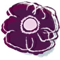 フリー素材:アイコン(twitter,mixi,ブログ);北欧風の赤紫のシンプルな花(アネモネ)のイラスト;200×200pix