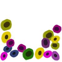フリー素材:アイコン(twitter,mixi,ブログ);北欧風のシンプルな花(アネモネ)いっぱいのフレーム;200×200pix
