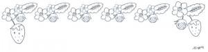 モノトーンの大人可愛い鉛筆画のイチゴの花のフリー素材:ヘッダー;800×200pix