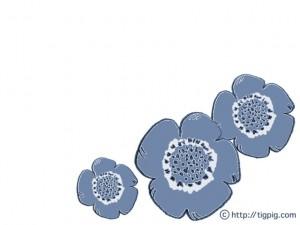 フリー素材:フレーム;北欧風のくすんだ水色が大人可愛いケシの花;640×480pix
