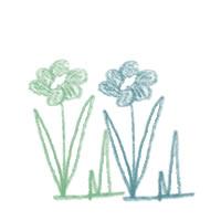 アイコン(twitter)のフリー素材:北欧風のシンプルな色鉛筆画の花;200×200pix
