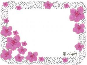 大人可愛い桃の花とモノトーンのレースのフレーム:640×480pix