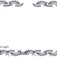 モノトーンの葉っぱのフレーム:640×480pix