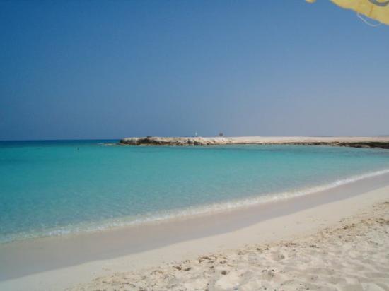 oasi-egiziane-e-elalamein