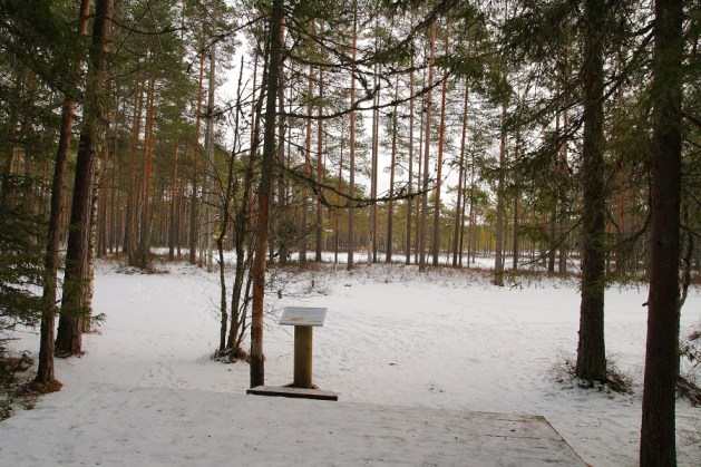 lahemaa national park winter