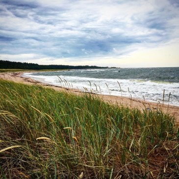 Top Hiiumaa attractions for one day road trip