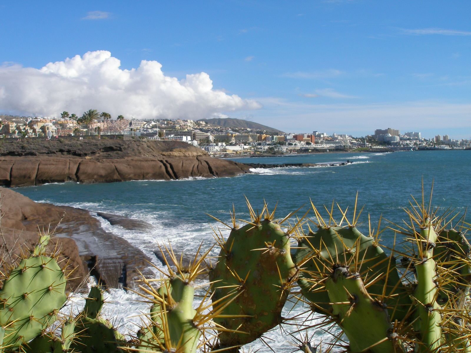 What makes Playa de las Americas Tenerife best resort