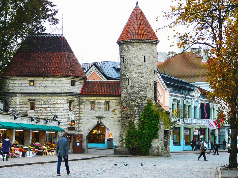 Must see museums and things to do in Tallinn Old town for cruise passengers