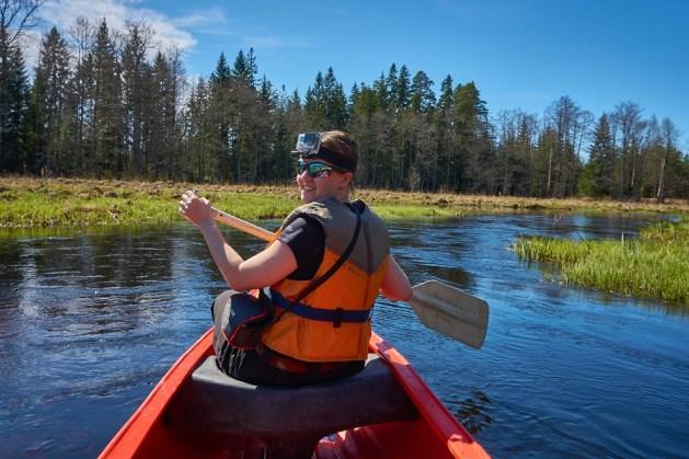 Canoe Tour in Kõrvemaa National Park