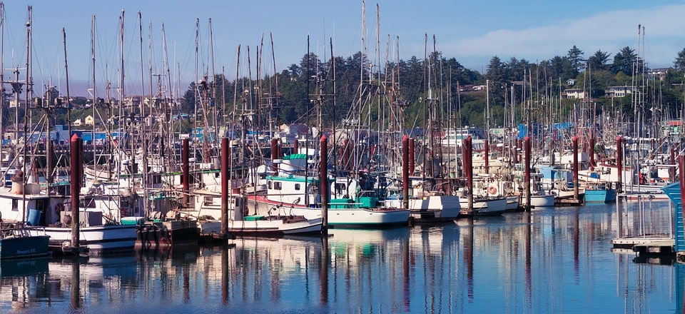 Seattle to San Francisco road trip - newport oregon