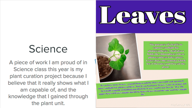 student-led conferences and engagement in PLPs