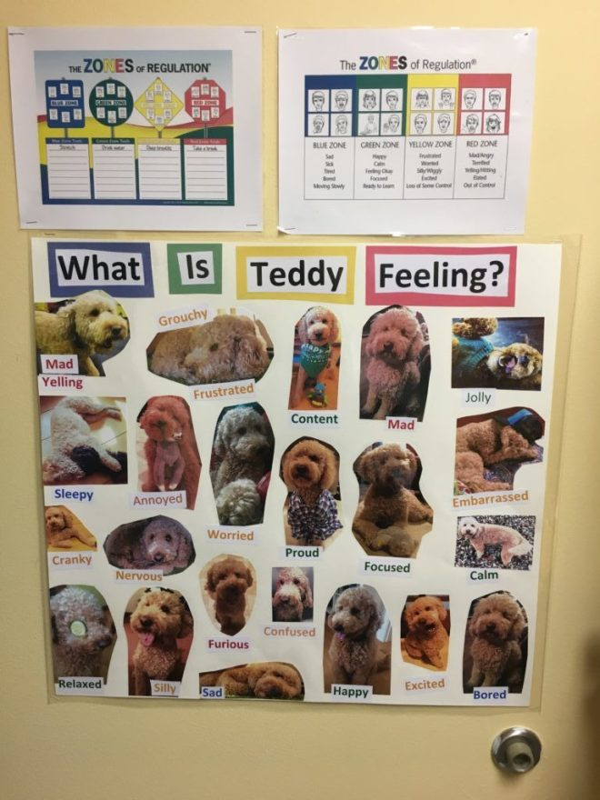 therapy dogs of Vermont