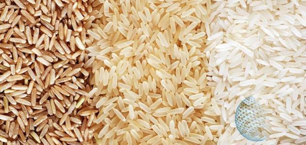 نظرة على تجارة الأرز الدولية