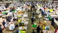 أين تقع أسواق الجملة التجارية في فلسطين