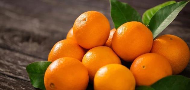 زراعة البرتقال في السعودية