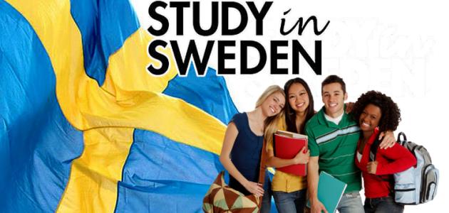 ما هي متطلبات تدريس اللغة الانجليزية في السويد