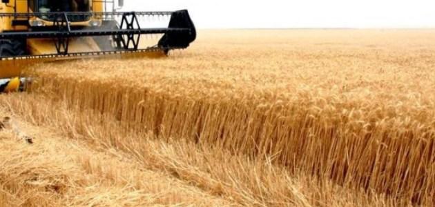 ما هي طريقة نجاح الزراعي في السودان